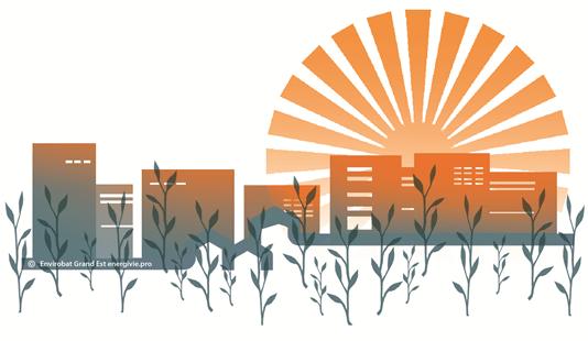 Voir/Revoir – Conférence Confort d'été et solutions fondées sur la nature (2ème partie) – Retours d'expériences de plusieurs villes